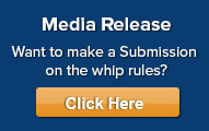 Media Release-Consultation of the whip rules